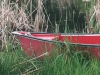 red-boat-in-grass