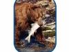 fishing-bear