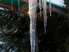 icicle-with-sunspot