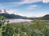 mountains-lupine-water