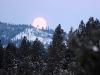 moon-winter